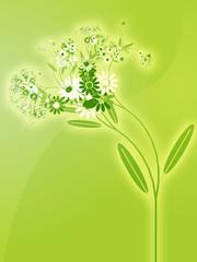 Illustration of various assorted flowers, wallpaper design