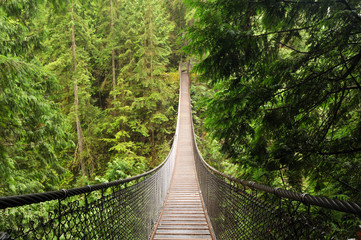 Photo sur Aluminium Pont lynn valley suspension bridge