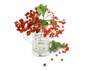 Bouquet of a ashberry