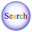 """Search"" button"