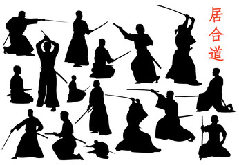 iaido vector set