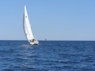 Sailboat in the harbor