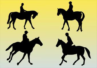 illustration of four horses