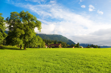 Wall Mural - Alps morning landscape. Wide angle view.
