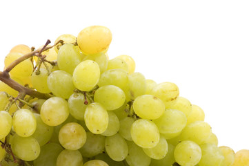 object on white - food Red grapes