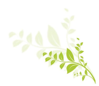 vecteur série, floral design nature graphisme vectoriel