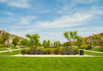 Urban Park Among Houses