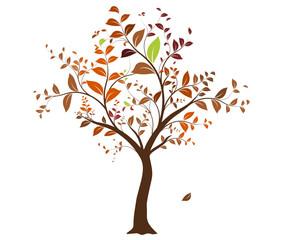 vecteur série - arbre vectoriel en automne sur fond blanc
