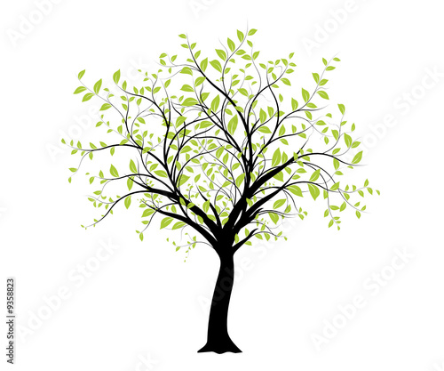 vecteur s rie d coration vectorielle verte arbre sur. Black Bedroom Furniture Sets. Home Design Ideas