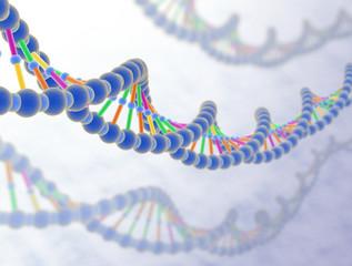 DNA 3