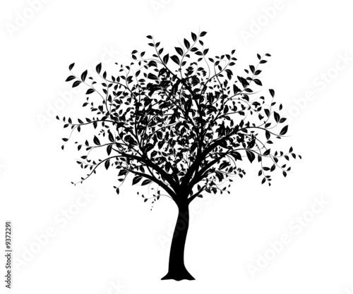 vecteur s rie arbre noir isol sur fond blanc fichier vectoriel libre de droits sur la. Black Bedroom Furniture Sets. Home Design Ideas