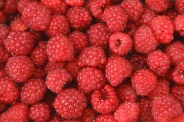 Appetizing fresh juicy raspberry background