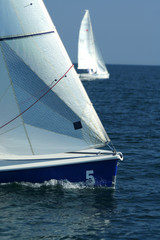 Sailing sport / regatta / The winner and losed