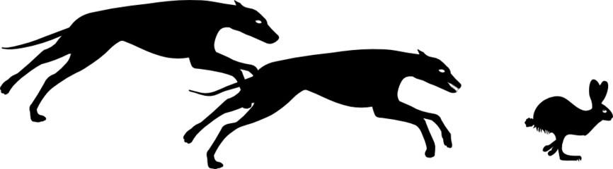 greyhound hunting rabbit vector file