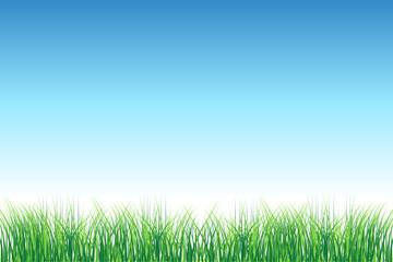 Green field on clear sky