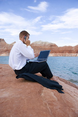 Business Travel Telecommuting