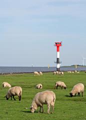 Landschaft an der Nordseeküste, Deichgebiet