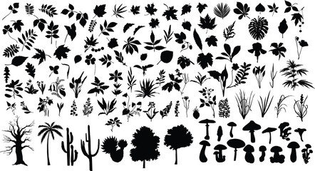 Silhouettes of different plants