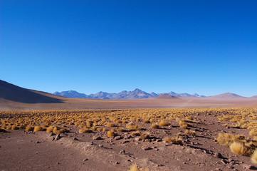 plaine desertique