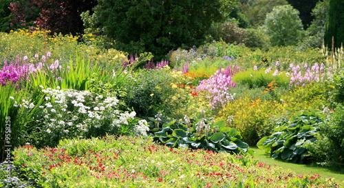 Bosquet fleuri au soleil photo libre de droits sur la banque d 3 - Je campe dans mon jardin ...
