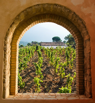 arched window on the vineyard with roof