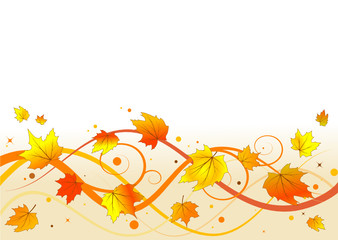 Autumn floral background, vector illustration