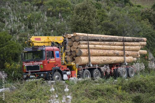 camion de transport de bois photo libre de droits sur la banque d  ~ Camion Transport De Bois