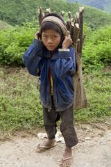 Kind transportiert Brennholz, Laos