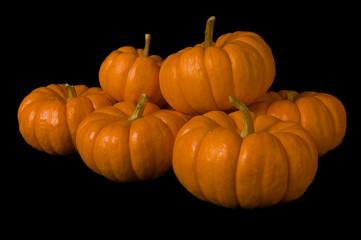 Six mini pumpkins