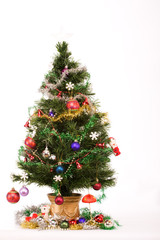 Decorated Christmas tree with a white star on top