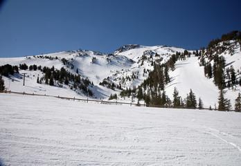 ski slopes at a califormia ski ressort