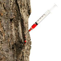 Syringe inserted into tree trunk on white