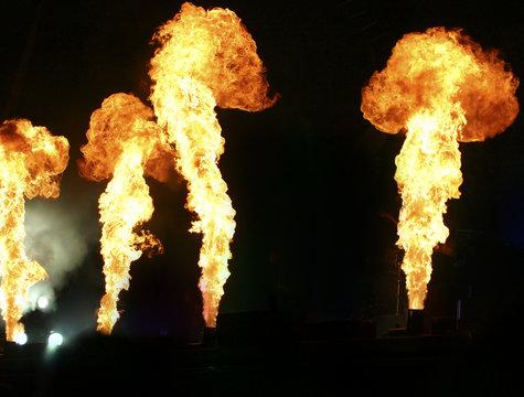 vier flammen