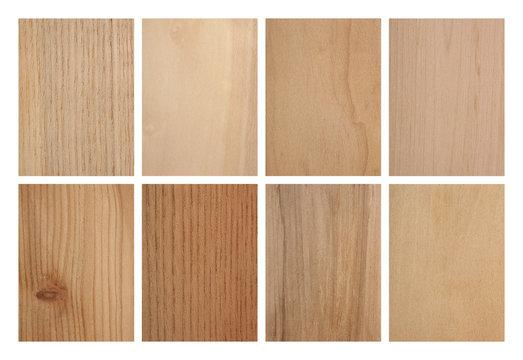 Set of eight wood textures: ash tree, aspen, cypresses