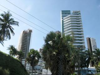 Immeubles blancs, arbres et ciel bleu, Rio, Brésil.