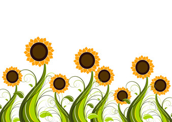 Sunflowers field vector background