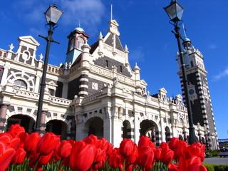 History Building In New Zealand Dunedin