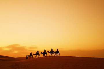 Photo sur Plexiglas Secheresse Caravan in Sahara desert