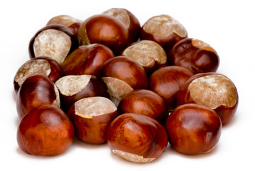 a few brown chestnuts are on a white background