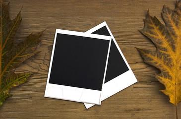Blan polaroid frames over autumn background