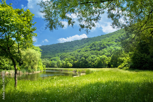 река деревья трава природа загрузить