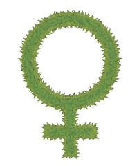 Women in the Green Movement - Green Leaves