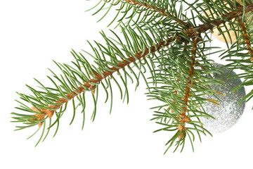 Fir tree branch with decoration on a white background.