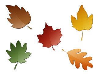 photos  illustrations et vid u00e9os de  quot feuilles d automne quot christian clipart backgrounds christian clipart bibles