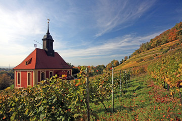 weinberkirche in Pillnitz