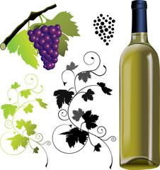 set of vine elements