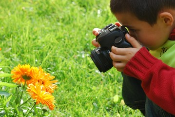 Young boy on a photo job shooting orange flowers