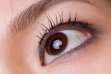 close up picture of a brown eyed woman
