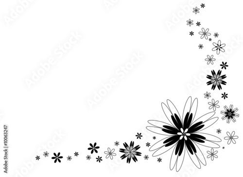 u0026quot fond graphique fleurs blanches et noires u0026quot  photo libre de