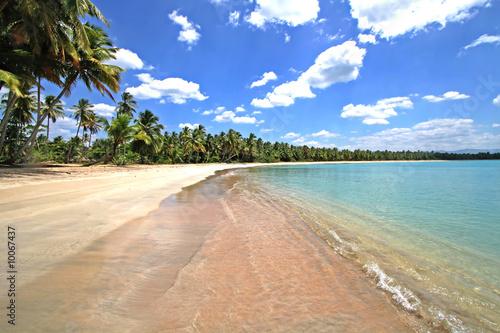 traumhafter karibischer strand mit palmen sand und meer. Black Bedroom Furniture Sets. Home Design Ideas